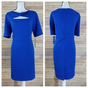 NWT Dana Buchman 16 Cosmopolitan Chic Cobalt Dress